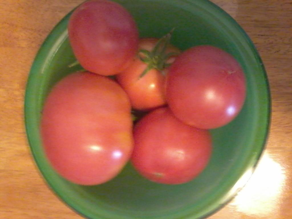 Deb's tomatoes